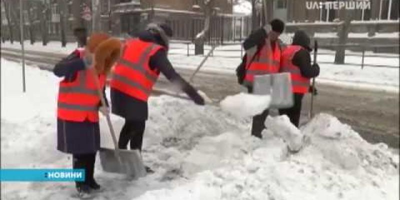 Вбудована мініатюра для Допомагати комунальникам чистити вулиці в Миколаєві вийшли безробітні